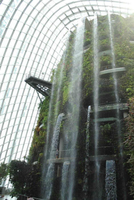 World's Highest Indoor Waterfall Cascades From the Top of the Cloud Forest Mountain