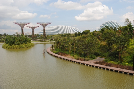 Dragonfly Lake at Gardens by the Bay, Singapore