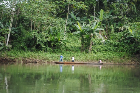 Villagers paddle up river in dugout canoes