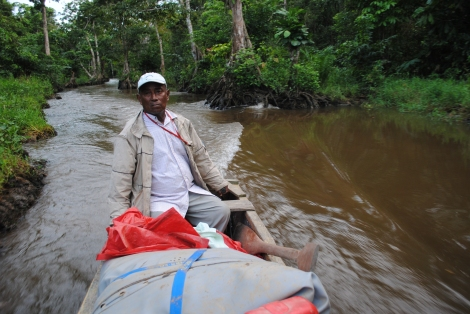 Our Garifuna captain steers us through the dense mangrive forests