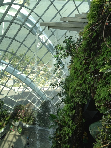 View From the Top of the Cloud Forest Conservatory Waterfall