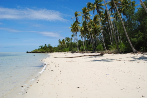 Hoga Island can be circumnavigated in a hot six hours, less at low tide