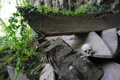 Coffins were dugout of the trunk of a single tree