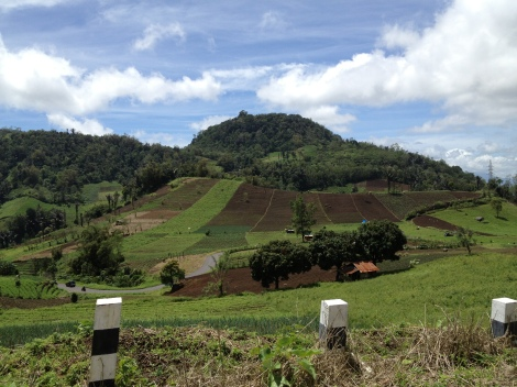 The lush North Sulawesi countryside