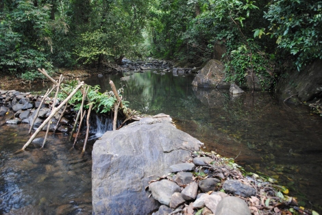 Stream near Tambdi Surla Temple