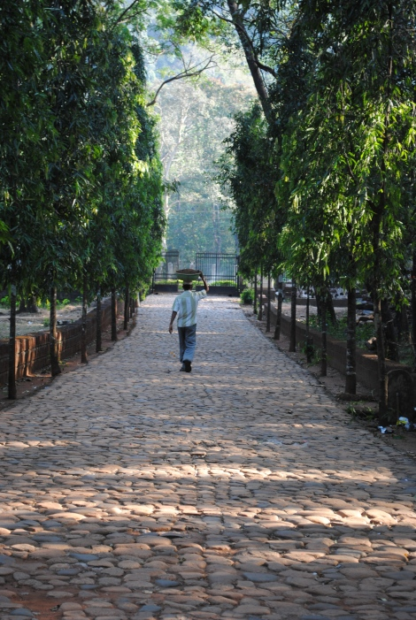 The stone walkway to Tambdi Surla, Goa's oldest temple.