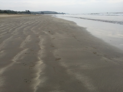 The empty stretch of gently sloping sand that is Mandrem beach